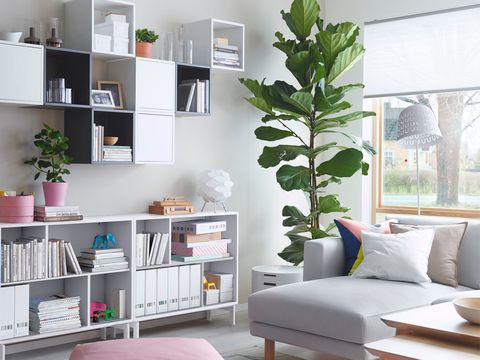 Room, Interior design, Green, Shelf, Wall, Shelving, Home, Furniture, Living room, Interior design,