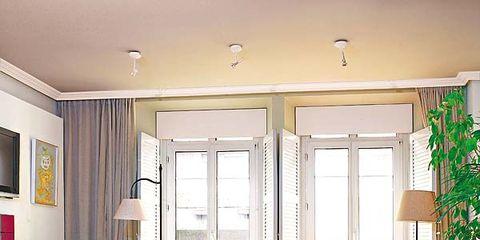 Wood, Room, Interior design, Floor, Green, Flooring, Furniture, Wall, Home, Ceiling,