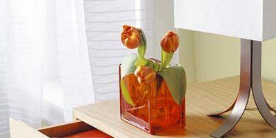 Wood, Petal, Flower, Orange, Amber, Artifact, Cut flowers, Flowering plant, Wood stain, Vase,