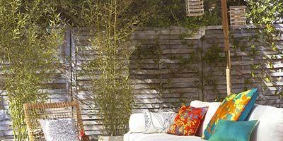 Wood, Furniture, Interior design, Room, Home, Flowerpot, Pillow, Outdoor furniture, Throw pillow, Interior design,