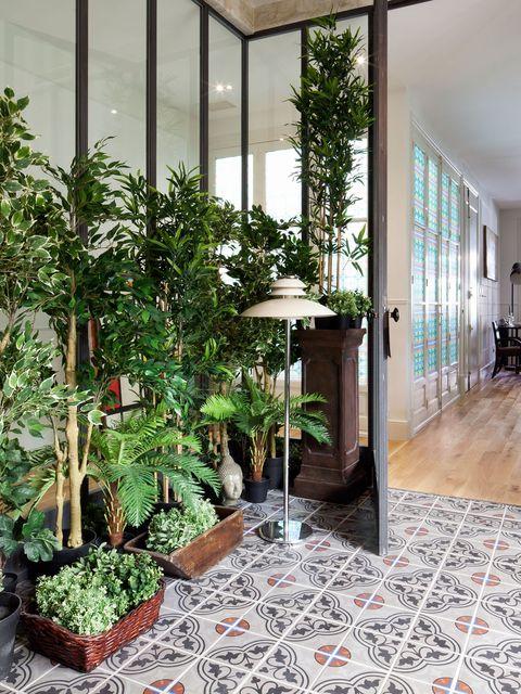 Plant, Floor, Flowerpot, Flooring, Interior design, Tile, Interior design, Glass, Fixture, Ceiling,