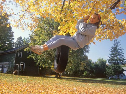 Leaf, Deciduous, Tree, People in nature, Autumn, Woody plant, Spring, Active pants, Park, Exercise,