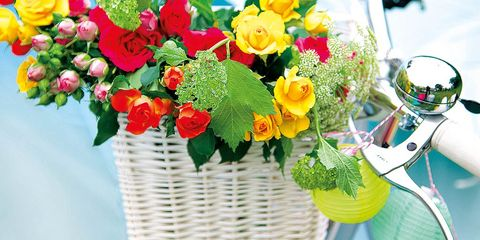 Bicycle tire, Bicycle accessory, Bicycle wheel rim, Bicycle basket, Flower, Bicycle, Petal, Bicycle wheel, Bouquet, Cut flowers,