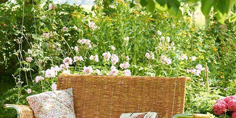 Shrub, Garden, Home accessories, Wicker, Outdoor furniture, Picnic basket, Basket, Linens, Yard, Backyard,