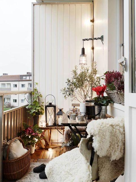Interior design, Room, Home, Interior design, Sheep, Sheep, House, Flowerpot, Houseplant, Home accessories,