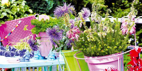 Inspiracion Balcones Decorados Con Flores - Fotos-de-balcones-con-flores