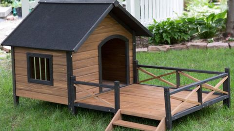 Kennel, House, Doghouse, Building, Shed, Outdoor play equipment, Roof, Backyard, Chicken coop, Cottage,