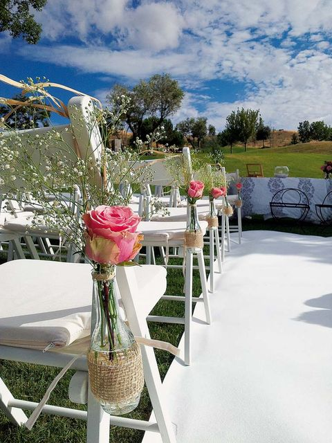 Chair, Table, Pink, Tablecloth, Furniture, Flower, Ceremony, Textile, Chiavari chair, Plant,