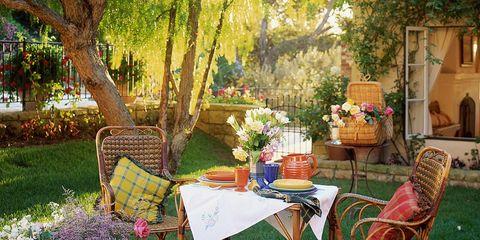 Plant, Flowerpot, Furniture, Table, Garden, Chair, Outdoor table, Outdoor furniture, Linens, Backyard,