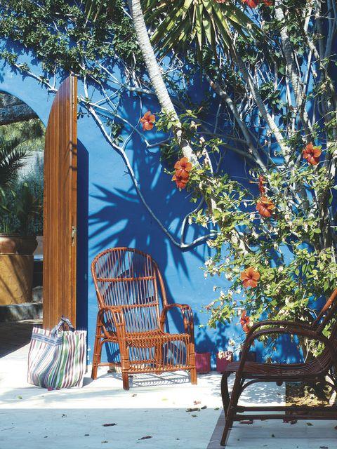 Blue, Branch, Woody plant, Art, Majorelle blue, Fruit tree, Street furniture, Outdoor furniture,