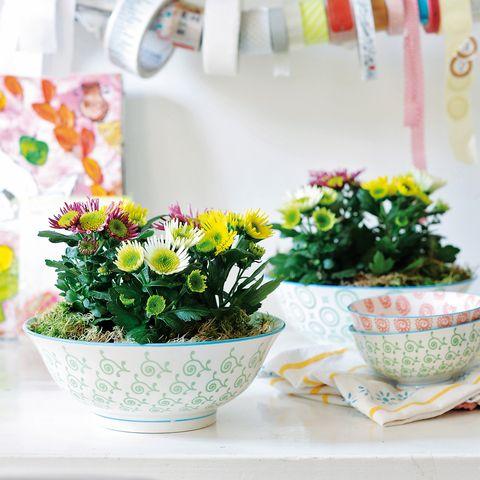 Flowerpot, Flower, Interior design, Petal, Bouquet, Flower Arranging, Vase, Floristry, Flowering plant, Annual plant,