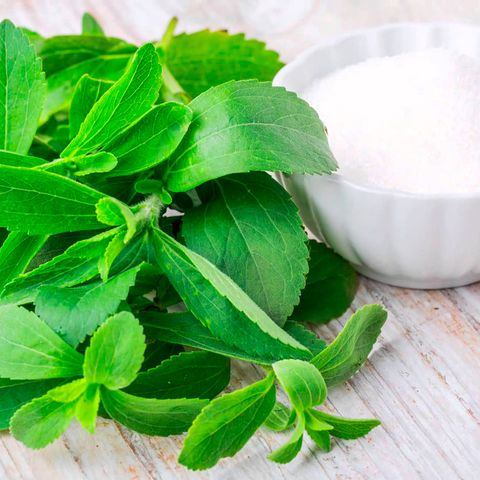 Green, Leaf, Ingredient, Herb, Chemical compound, Mixing bowl, Bowl, Dairy, Spice,