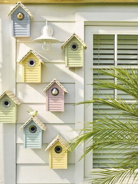 Yellow, Fixture, Window covering, Birdhouse, Birdhouse,