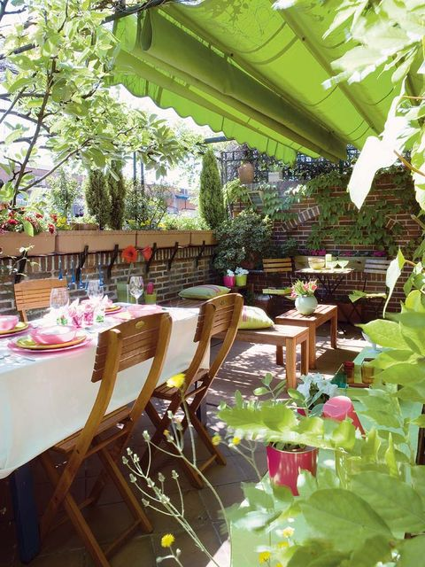 Furniture, Table, Chair, Tablecloth, Restaurant, Outdoor table, Linens, Garden, Shade, Annual plant,