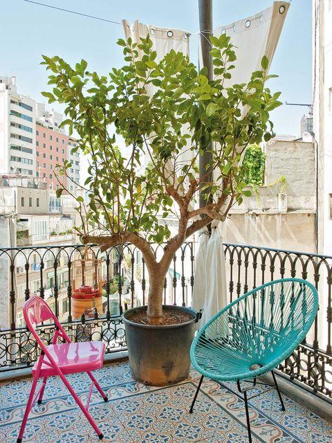 Furniture, Flowerpot, Outdoor furniture, Iron, Twig, Apartment, Street furniture, Condominium, Houseplant, Balcony,