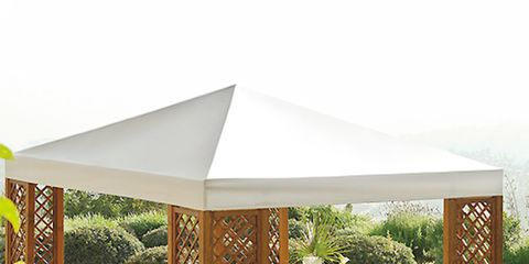 Plant, Outdoor furniture, Furniture, Outdoor table, Chair, Garden, Shade, Rectangle, Armrest, Patio,