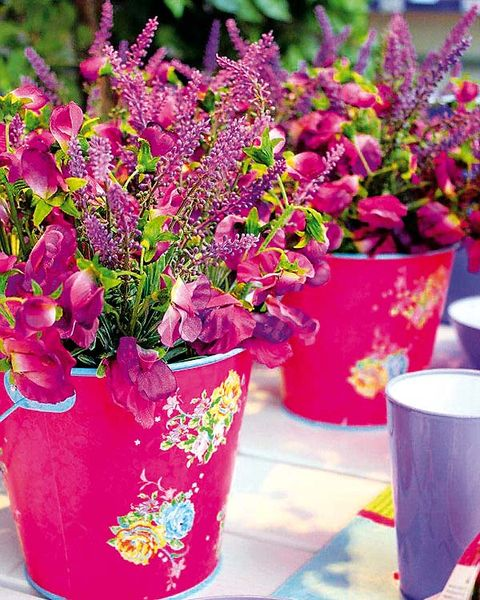Flower, Purple, Magenta, Flowerpot, Petal, Flowering plant, Interior design, Violet, Annual plant, Artificial flower,
