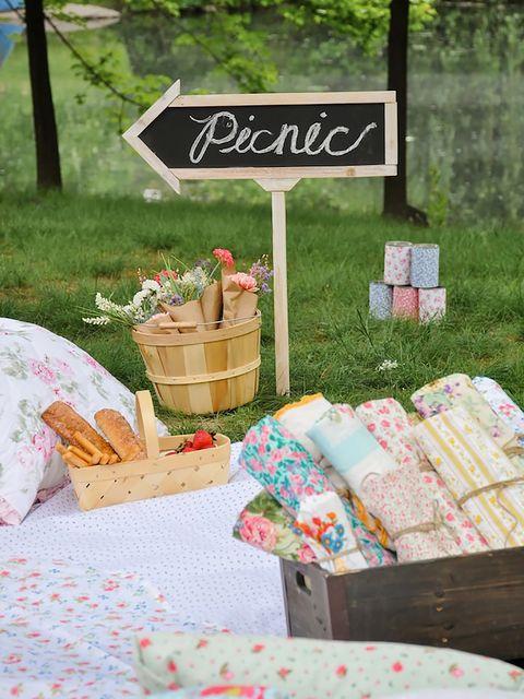 cartel que anuncia un picnic en el campo