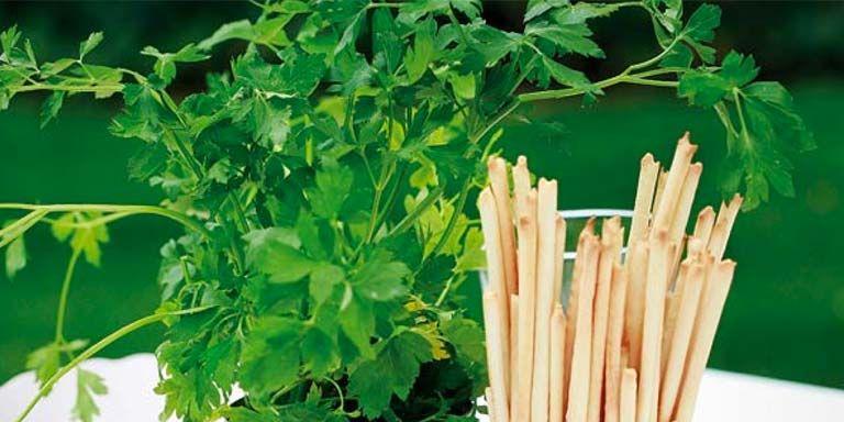 Ideas primorosas para decorar el jard n for Idea brisa vista para jardin