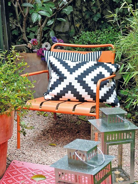 Flowerpot, Outdoor furniture, Shrub, Houseplant, Garden, Armrest, Annual plant, Box, Yard,