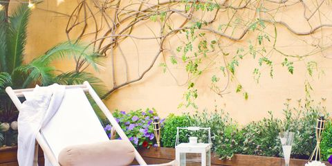 Wood, Furniture, Outdoor furniture, Hardwood, Armrest, Design, Outdoor table, Houseplant, Outdoor sofa, Backyard,