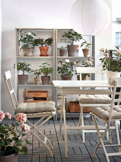 Plant, Flowerpot, Interior design, Room, Furniture, Interior design, Houseplant, Chair, Lampshade, Hardwood,