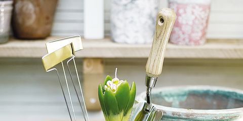 Flowerpot, Fluid, Serveware, Interior design, Houseplant, Still life photography, Ceramic, Pottery, earthenware, Personal care,