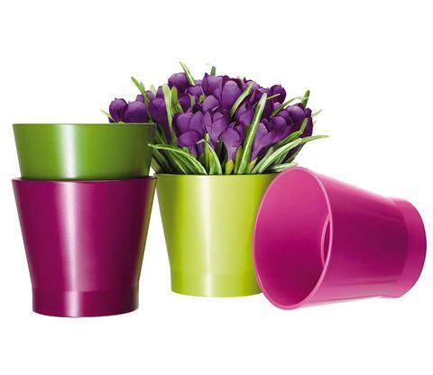 Purple, Violet, Magenta, Flower, Pink, Lavender, Vase, Plastic, Cylinder, Still life photography,