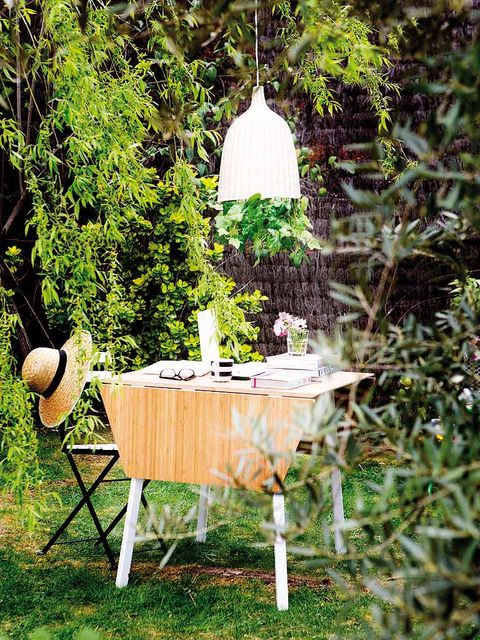 Table, Furniture, Outdoor table, Garden, Outdoor furniture, Shrub, Backyard, Yard, Linens, Home accessories,