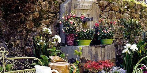 Serveware, Dishware, Flower, Furniture, Table, Tableware, Petal, Porcelain, Linens, Lavender,