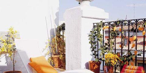 Flowerpot, Houseplant, Wicker, Basket, Floral design, Home accessories, Pillow, Decoration,