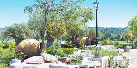 Plant, Garden, Flower Arranging, Yard, Floral design, Landscaping, Linens, Outdoor furniture, Cut flowers, Backyard,
