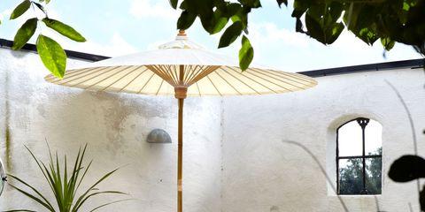 Flowerpot, Outdoor furniture, Hardwood, Shade, Armrest, Houseplant, Pillow, Throw pillow, Daylighting, Perennial plant,