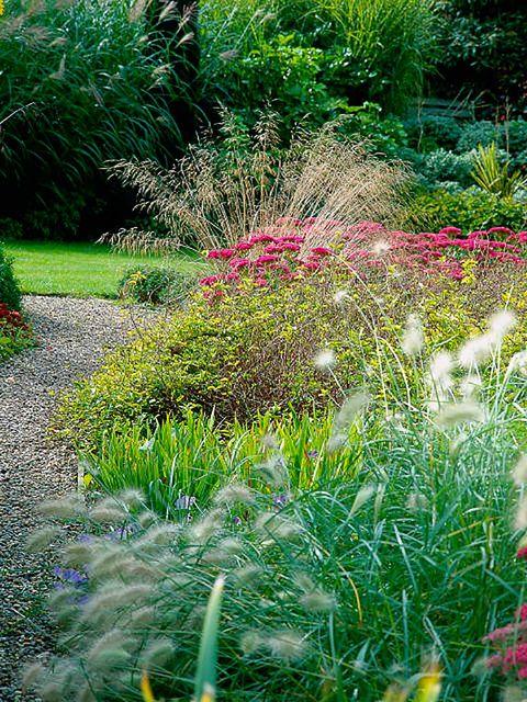 Vegetation, Grass, Plant, Shrub, Plant community, Garden, Flowering plant, Botany, Grass family, Terrestrial plant,