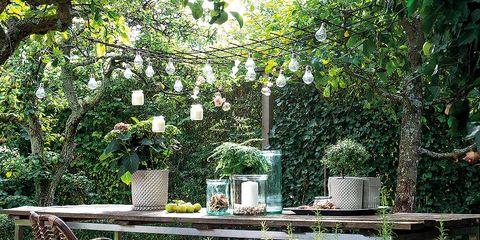 Furniture, Tree, Patio, Chair, Backyard, Garden, Botany, Yard, Landscaping, House,