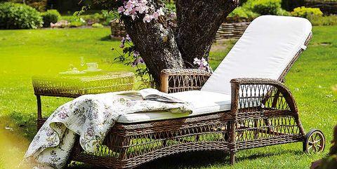 Tree, Garden, Shrub, Outdoor furniture, Shade, Groundcover, Backyard, Lawn, Yard, Park,