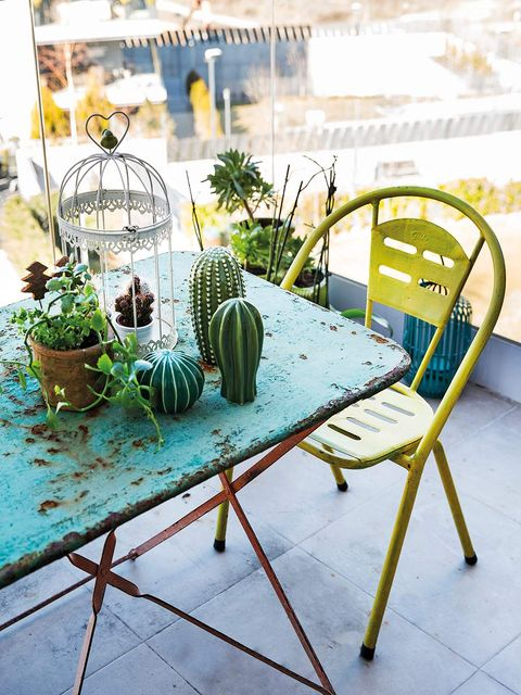 Chair, Table, Furniture, Turquoise, Houseplant, Coffee table, Design, Plant, Folding chair, Room,