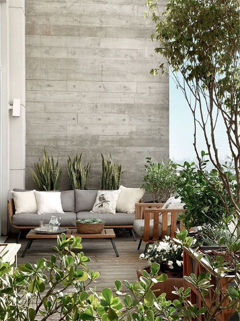 Flowerpot, Wall, Room, Interior design, Living room, Furniture, House, Home, Floor, Garden,