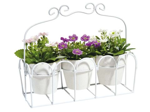 Flower, Petal, Cut flowers, Flower Arranging, Lavender, Flowering plant, Floral design, Floristry, Shrub, Outdoor furniture,