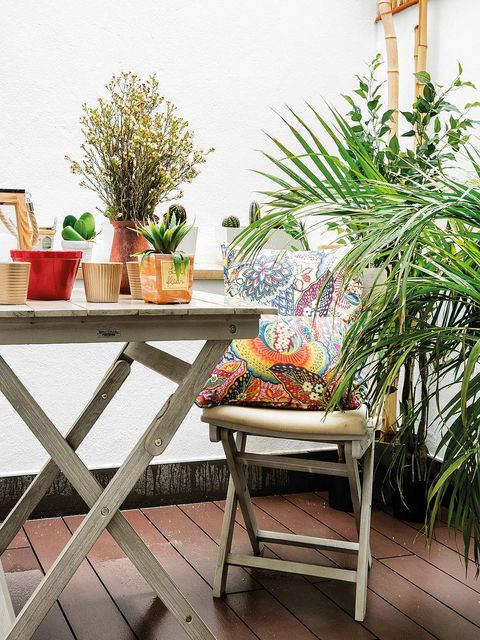 Furniture, Houseplant, Room, Table, Interior design, Balcony, Yellow, Botany, House, Chair,