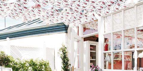 Furniture, Interior design, Flowerpot, Ceiling, Chair, Interior design, Decoration, Design, Backyard, Light fixture,