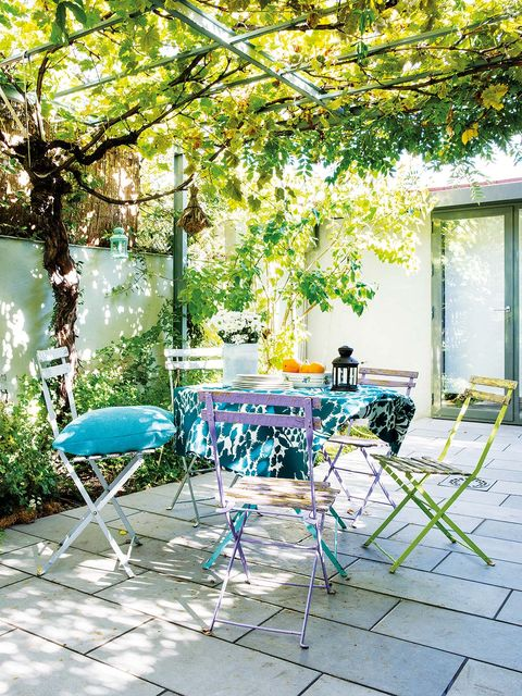 Green, Yellow, Tree, Furniture, Backyard, Patio, Branch, Chair, Yard, Table,