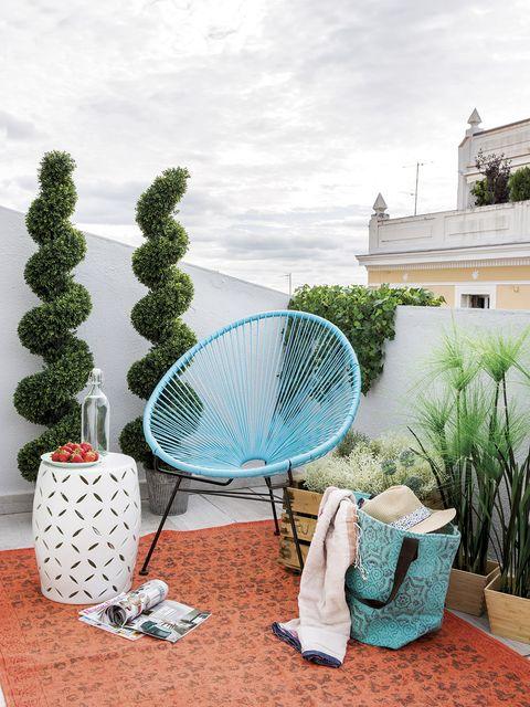 Net, Botany, Plant, Cactus, House, Photography, Vacation, Racket,