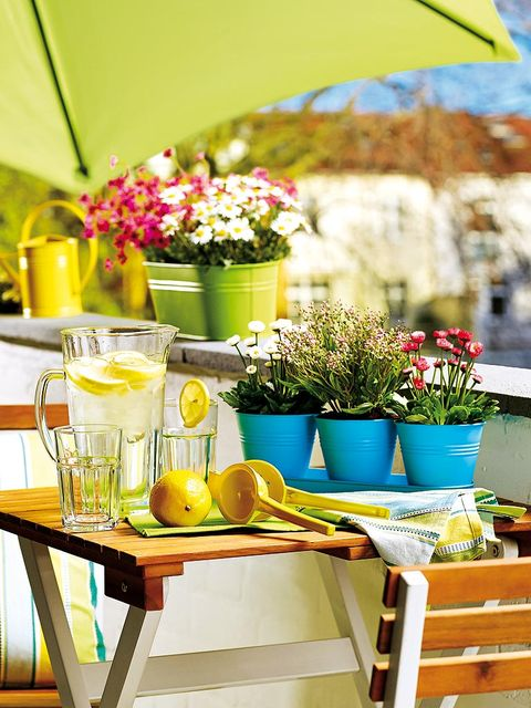 Yellow, Green, Table, Brunch, Furniture, Summer, Room, Flower, Plant, House,