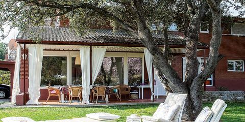 Grass, Lawn, Yard, Purple, Tree, House, Spring, Garden, Backyard, Furniture,