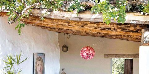 Flowerpot, Petal, House, Houseplant, Interior design, Coffee table, Decoration, Floral design, Hacienda, Flower Arranging,