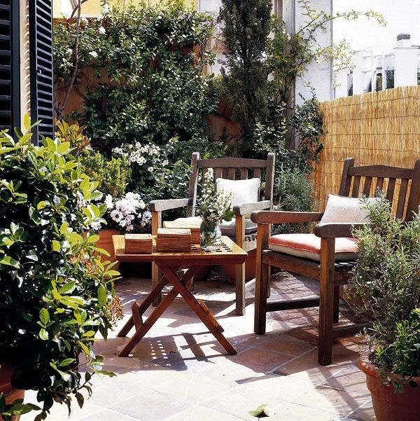 plant, flowerpot, shrub, garden, backyard, houseplant, outdoor table, courtyard, yard, outdoor furniture,