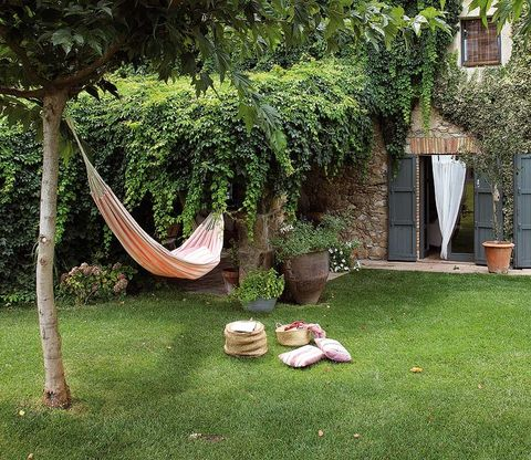 Grass, Wood, Hammock, Woody plant, Garden, Shrub, Backyard, Trunk, Lawn, Yard,