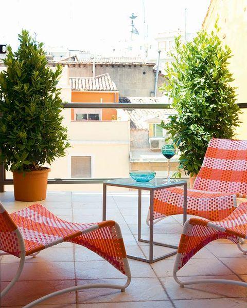 Furniture, Outdoor furniture, Outdoor table, Flowerpot, House, Shrub, Evergreen, Houseplant, Conifer, Fir,