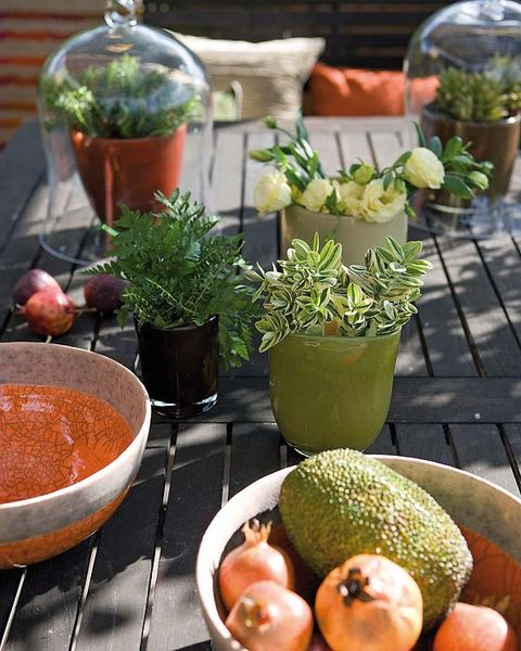 Flowerpot, Vegan nutrition, Fruit, Ingredient, Natural foods, Produce, Whole food, Food, Interior design, Local food,
